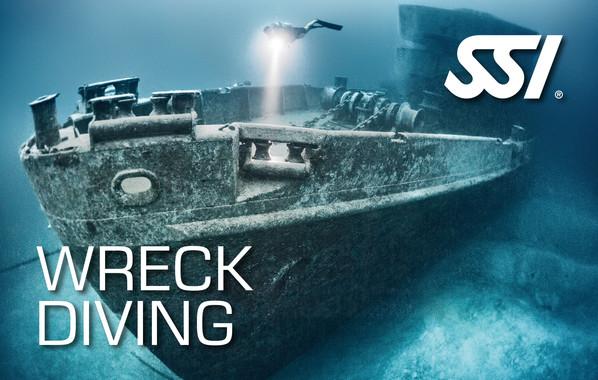 Wreek diving SSI kurs med Växjödyksport