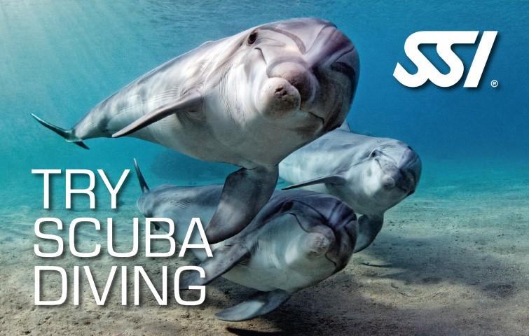 Prova på dyk ! try scuba diving